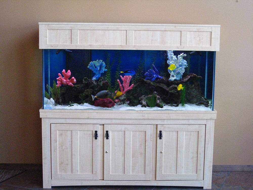 Painting fish tank stand for Fish tank paint